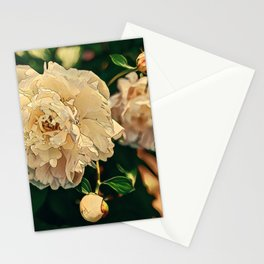Fleeting Blooms Stationery Cards