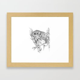 Harvest mouse Framed Art Print