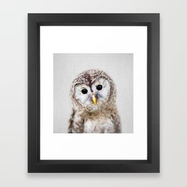 Baby Owl - Colorful Framed Art Print