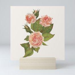 Rose Illustration Mini Art Print
