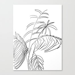 Ferny Canvas Print