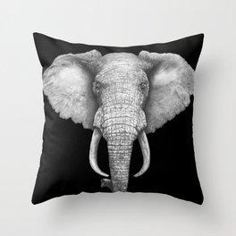 Elephant on black Throw Pillow