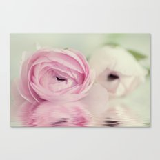 Ranunculus mirrored Canvas Print