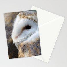 Barn Owl portrait Stationery Cards