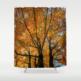 Colorful Maple of New England. Shower Curtain