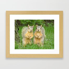 Squirrels-Brothers Framed Art Print
