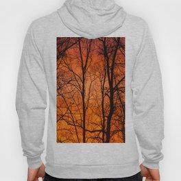 Leafless Trees At October Sunrise #decor #buyart #society6 Hoody