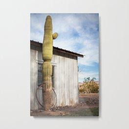A Lone Cactus Metal Print