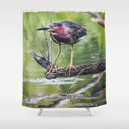 Green Heron in the channel Shower Curtain