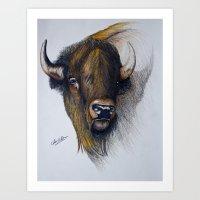 buffalo Art Prints featuring Buffalo by Chris Knight