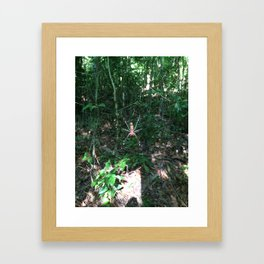 Close Encounter Framed Art Print