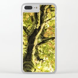 Maple Divine Clear iPhone Case
