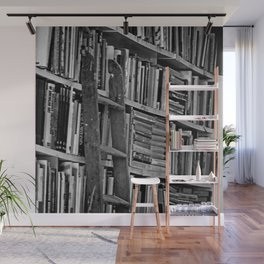 Book Shelves Wall Mural