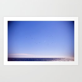 Birds Blue Sky Constellation Art Print