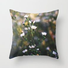 Chasing Forgotten Dreams Throw Pillow