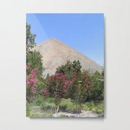 Elqui Valley Metal Print