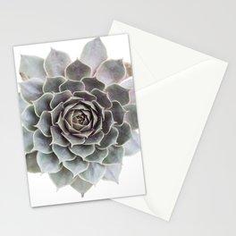 Succulent burst Stationery Cards