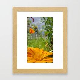 Spring Storm Framed Art Print