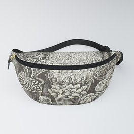 Cacti And Succulents Fanny Pack