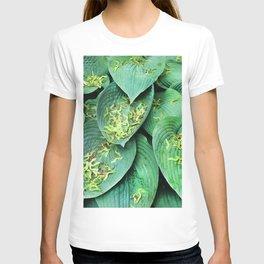 489 - Key Catchers T-shirt