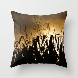 Maize Throw Pillows For Any Room Or Decor Style Society6