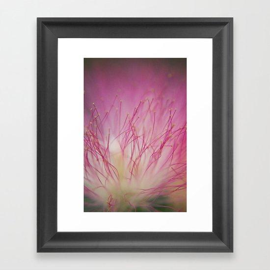 Mimosa Bloom Framed Art Print