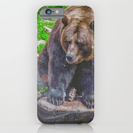 Fortitude & Integrity (Painting) iPhone Case