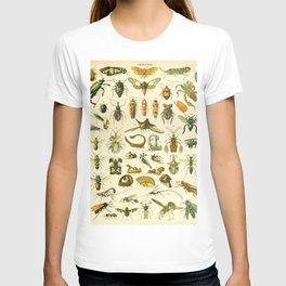 """Adolphe Millot """"Insectes"""" Nouveau Larousse 1905 T-shirt"""