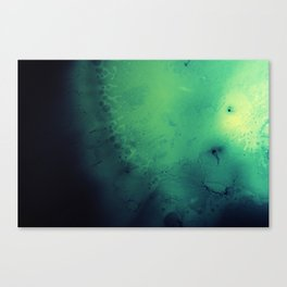 Green liquid Canvas Print