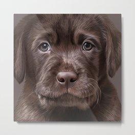 Drawing puppy Labrador Metal Print