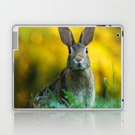 Rabbit   Lapin Laptop & iPad Skin