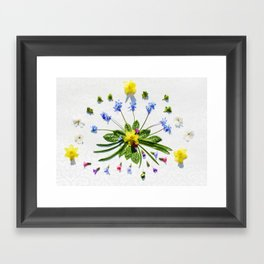 Spring flowers and branches II Framed Art Print