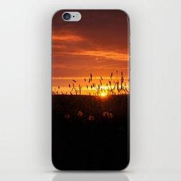 Midnight Sun. iPhone Skin