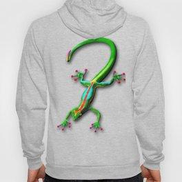 Gecko Lizard Rainbow Colors Hoody