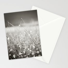 Morning Dew Nature Photography, Sparkle Bokeh Grass, Sepia Sparkly Photograph Stationery Cards