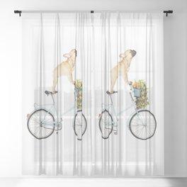 French Bulldog on Bicycle Sheer Curtain