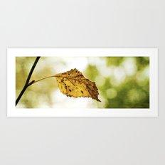 Snapshot of Autumn {Panoramic} Art Print