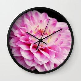 Close up pink dahlia Wall Clock