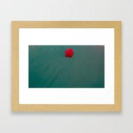 Not a Marigold Framed Art Print