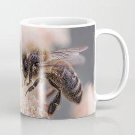 Macro Bee Picture Coffee Mug