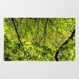 Tree Leafs. Rug