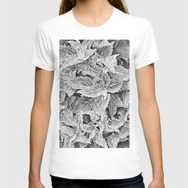 coleus black and white T-shirt