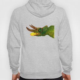 The Chameleon Hoody