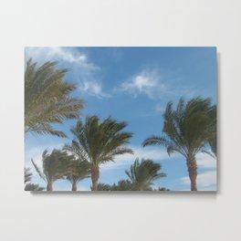 N.A. Palm 1 Metal Print