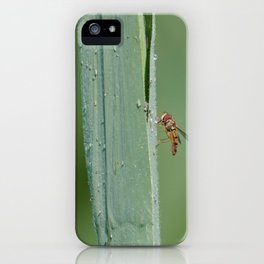 Dragon flies and one insect iPhone Case