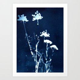 Botanicus (8), Botanical Art Print, Art Print, Botanical Poster, Vintage Print, Home Decor Art Print