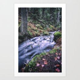 The Magic Ravine Art Print
