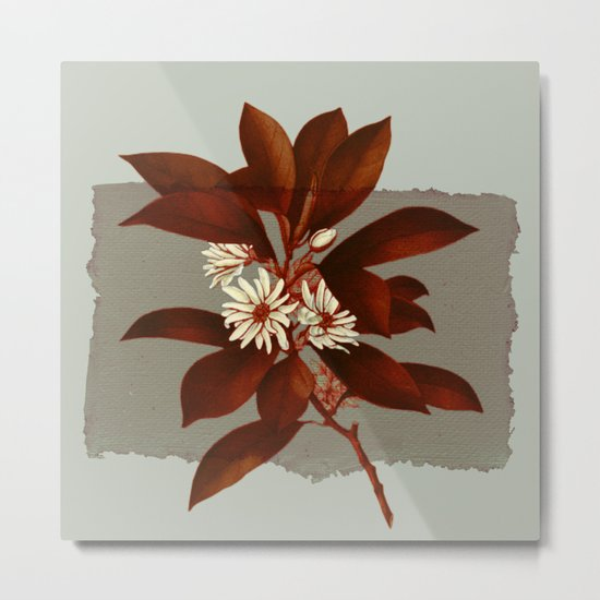 branch and flowers on grey paper Metal Print