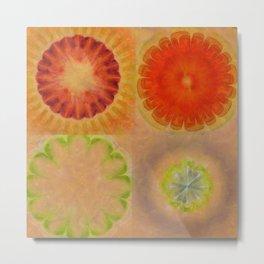 Nontransmittal Sense Flower  ID:16165-112135-50620 Metal Print