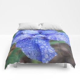 After Rain Comforters